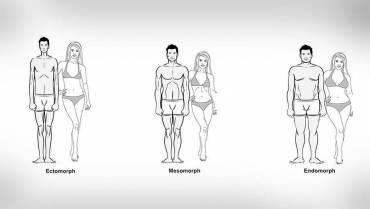 What Is Your Body Type? (Somatotype)